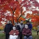 3.北大の紅葉