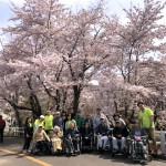 2018.5.1 農試公園へお花見